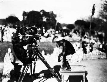 """Chimpanzees """"Buster"""" and """"Cissy"""" with a newsreal camera at San Antonio Zoo. Photograph shows the chimpanzees that were named for President Franklin Roosevelt's grandchildren. """"Buster"""" on left, is posed with movie camera as if filming """"Cissy."""" Photo circa: February 1934. Photo courtesy UTSA Libraries Special Collections."""