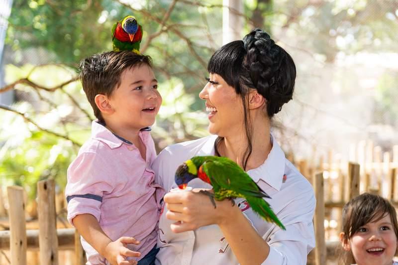 The San Antonio Zoo will host Mandalory Day on Saturday.