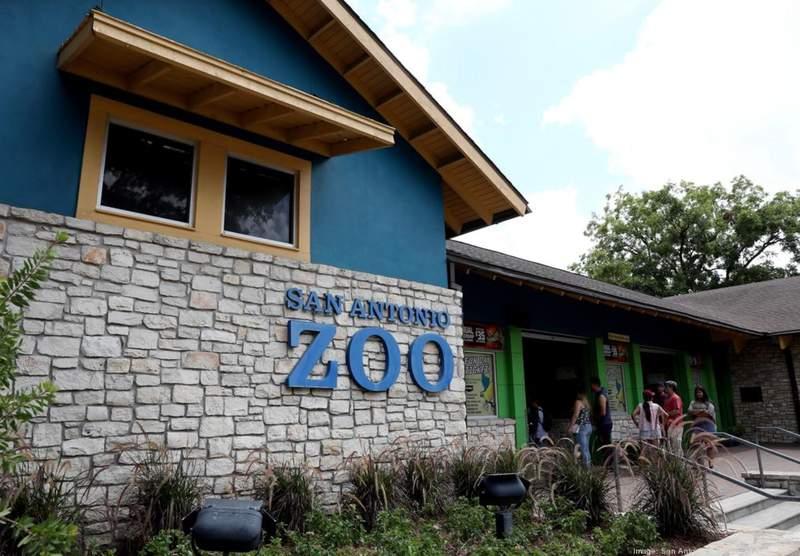 Photo Courtesy: San Antonio Zoo