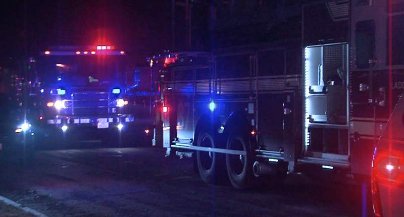 Five dogs and two cats were killed in a house fire on the North Side overnight, according to San Antonio Fire Department.