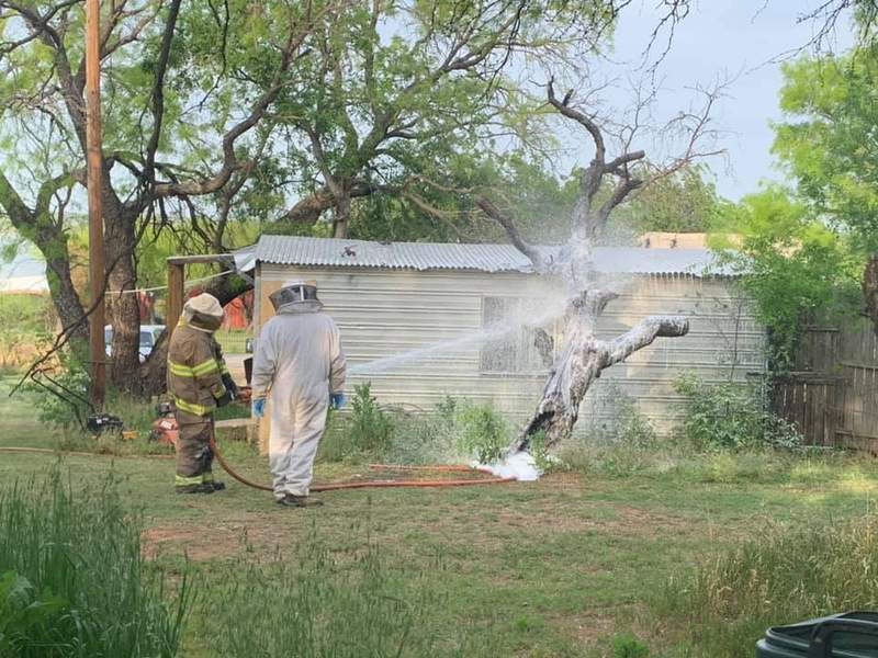 Image from Breckenridge Fire Department after a swarm of bees killed a Texas man.