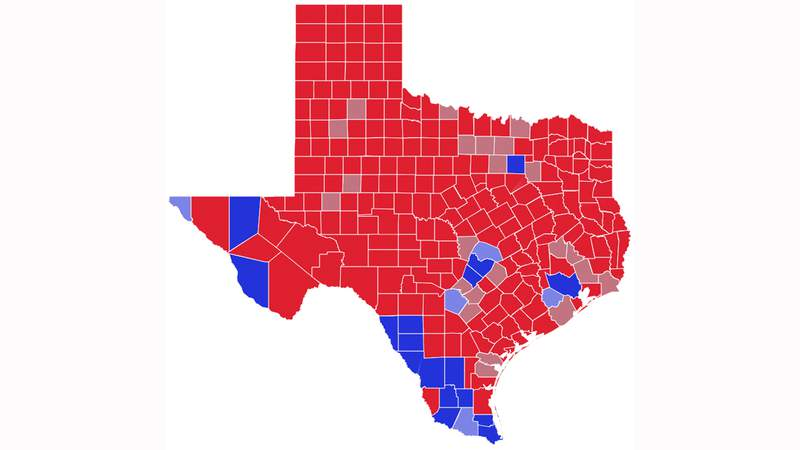 How Texas voted in 2020