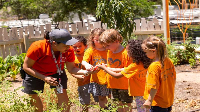 San Antonio Zoo's nature-based preschool receives Educational Award of Excellence
