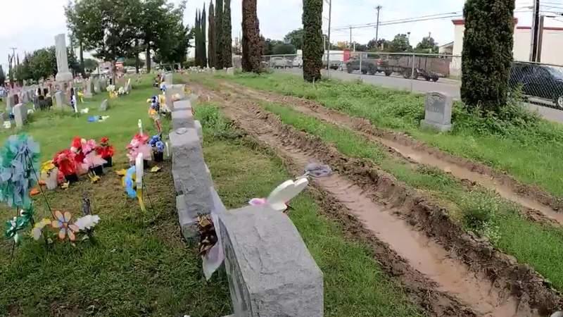 Archdiocese hires extra crews to tame overgrown San Antonio Catholic cemeteries