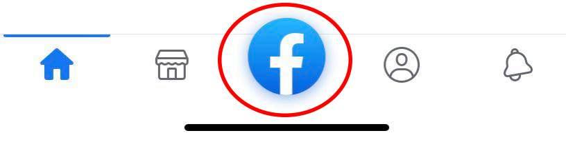 Voici une capture d'écran de l'icône Facebook.