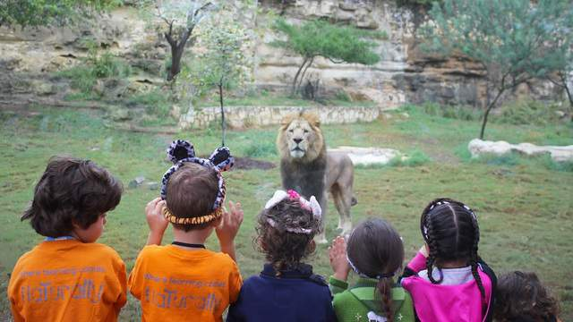 Photo: Brian Carter/San Antonio Zoo