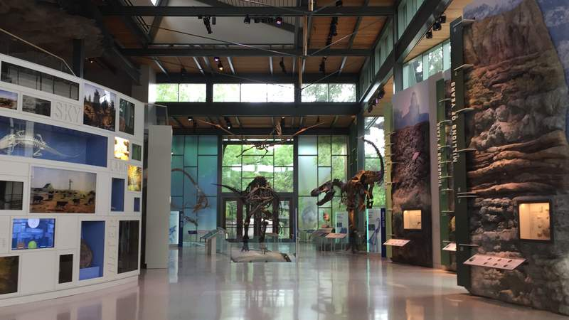 All interactive exhibits and audio components will be removed from the Witte Museum.