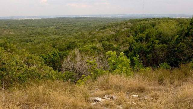 Courtesy: Texas Parks & Wildlife
