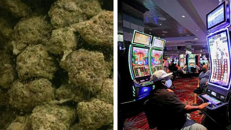 Marijuana, casino gambling