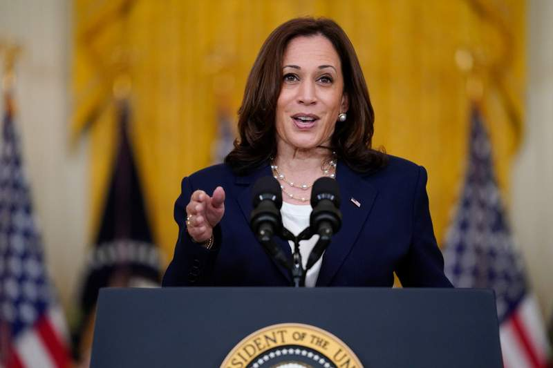 FILE - In this Aug. 10, 2021, file photo, Vice President Kamala Harris speaks from the East Room of the White House in Washington. The White House says Vice President Harris will visit California's Bay Area on Wednesday, Sept. 8, to campaign for Gov. Gavin Newsom, who faces removal from office in a Sept. 14 recall election. (AP Photo/Evan Vucci, File)