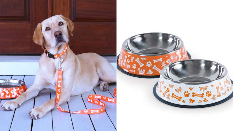 Whataburger has launched a pet collection and is selling a pet set with a collar, a leash and two bowls.