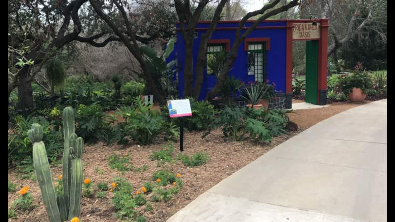Frida Kahlo's home, art inspiration brought to life at San Antonio Botanical Garden