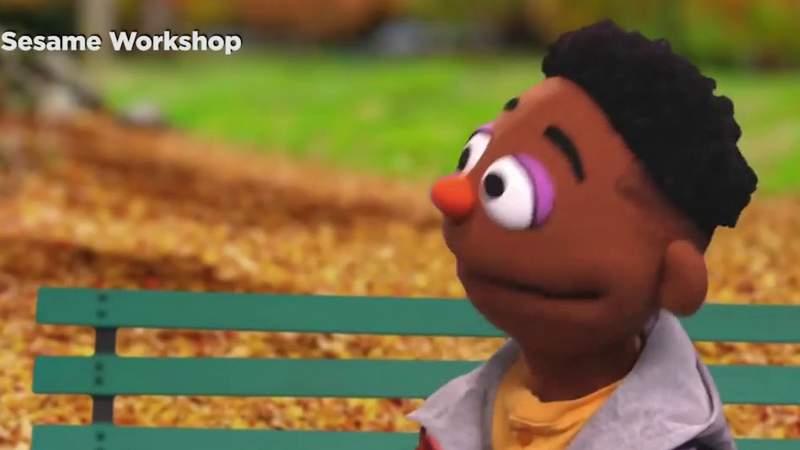 UTSA graduate is puppeteer for new Black muppet on Sesame Workshop