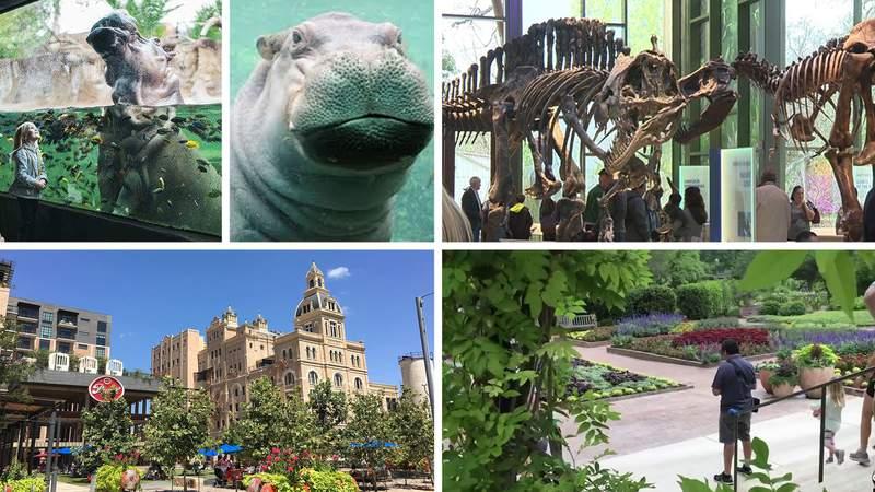 San Antonio tourism spots