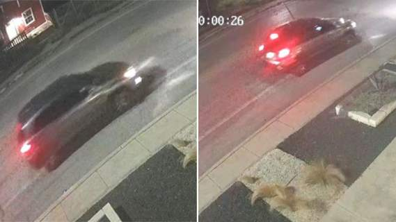 SAPD is asking for the public's help in identifying the suspect vehicle involved in a fatal shooting on April 12, 2021, on the 600 block of East Evergreen Street.