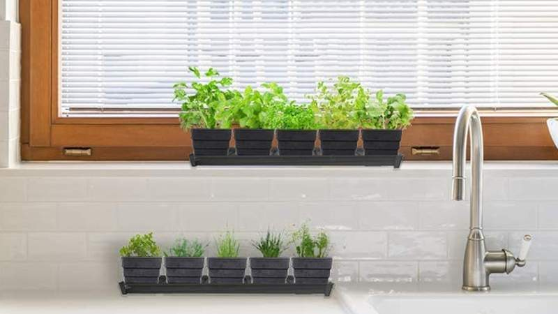 Grow 10 different culinary herbs right on your windowsill with this kit.