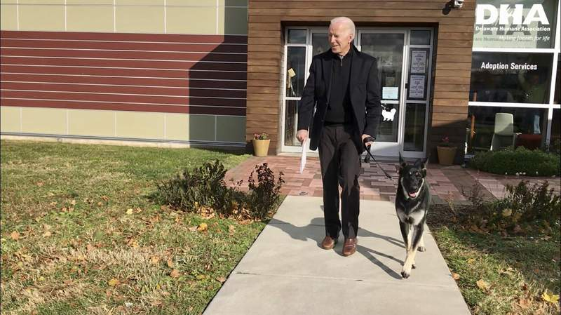 FILE - This Nov. 16, 2018, photo, file provided by the Delaware Humane Association shows Joe Biden and his newly-adopted German shepherd Major, in Wilmington, Del. (Stephanie Carter/Delaware Humane Association via AP)