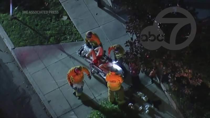 Lady Gaga's dog walker shot, French bulldogs stolen in LA