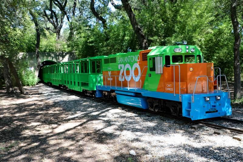 The new San Antonio Zoo train.
