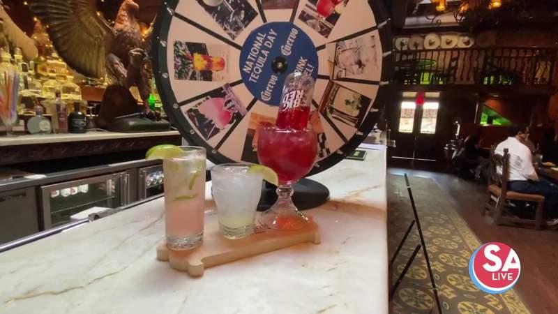 Spin the Wheel of Margaritas at Mi Tierra