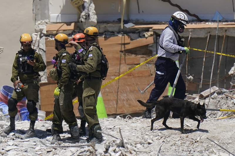 FILE - In this July 2, 2021, file photo, a dog aiding in the search walks past a team of Israeli search and rescue personnel, left, atop the rubble at the Champlain Towers South condominium in Surfside, Fla. While hundreds of rescuers search desperately for survivors within the rubble of the collapsed condominium, a smaller cadre of mental health counselors are also deploying to help families and other loved ones cope with the tragedy. (AP Photo/Mark Humphrey, File)