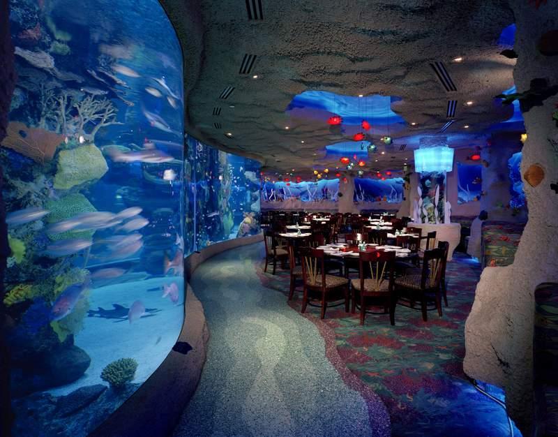 Downtown Aquarium Houston – Aquarium Restaurant