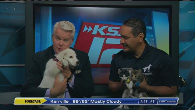 Mike Osterhage visits with Hugo Vital from the Animal Defense League.