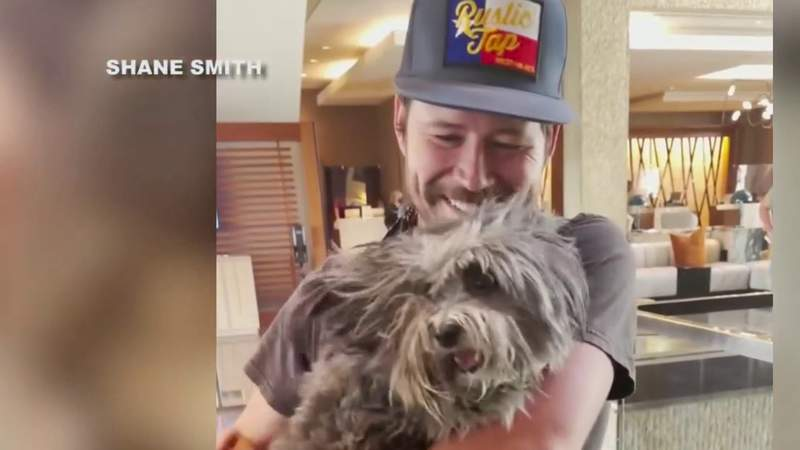 Texas County singer reunited with stolen emotional support dog