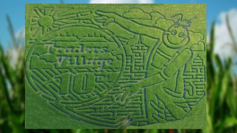 Traders Village Corn Maze 2021