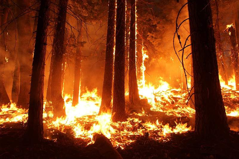 FILE - An undated image of a wildfire.