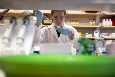 Biology junior Morgan Hale researches viral proteins at the McLellan Lab at The University of Texas at Austin on Wednesday.      Eddie Gaspar/The Texas Tribune