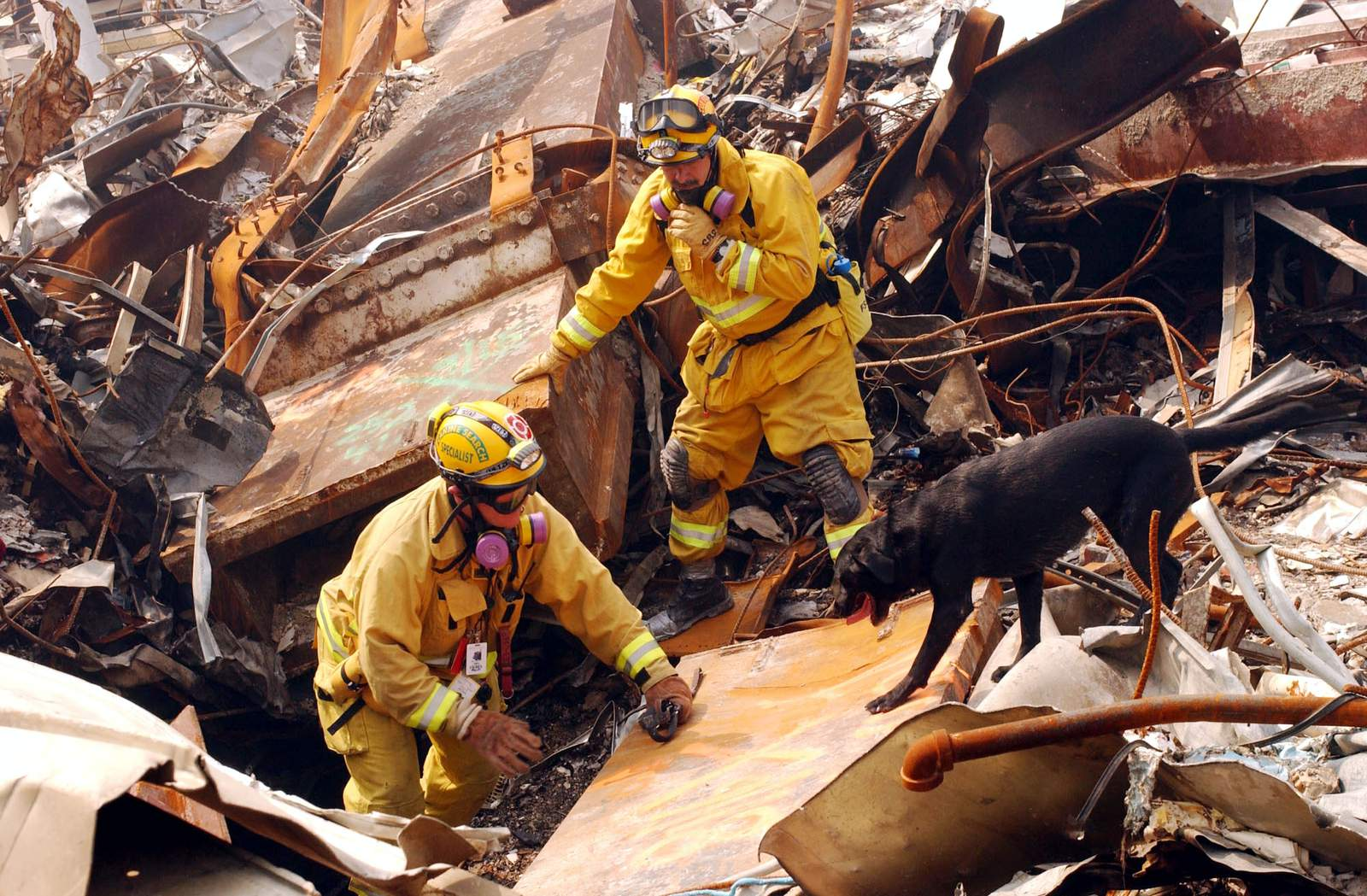 MikeScott from the California Task Force-8 and his dog, Billy, search through rubble for victims.
